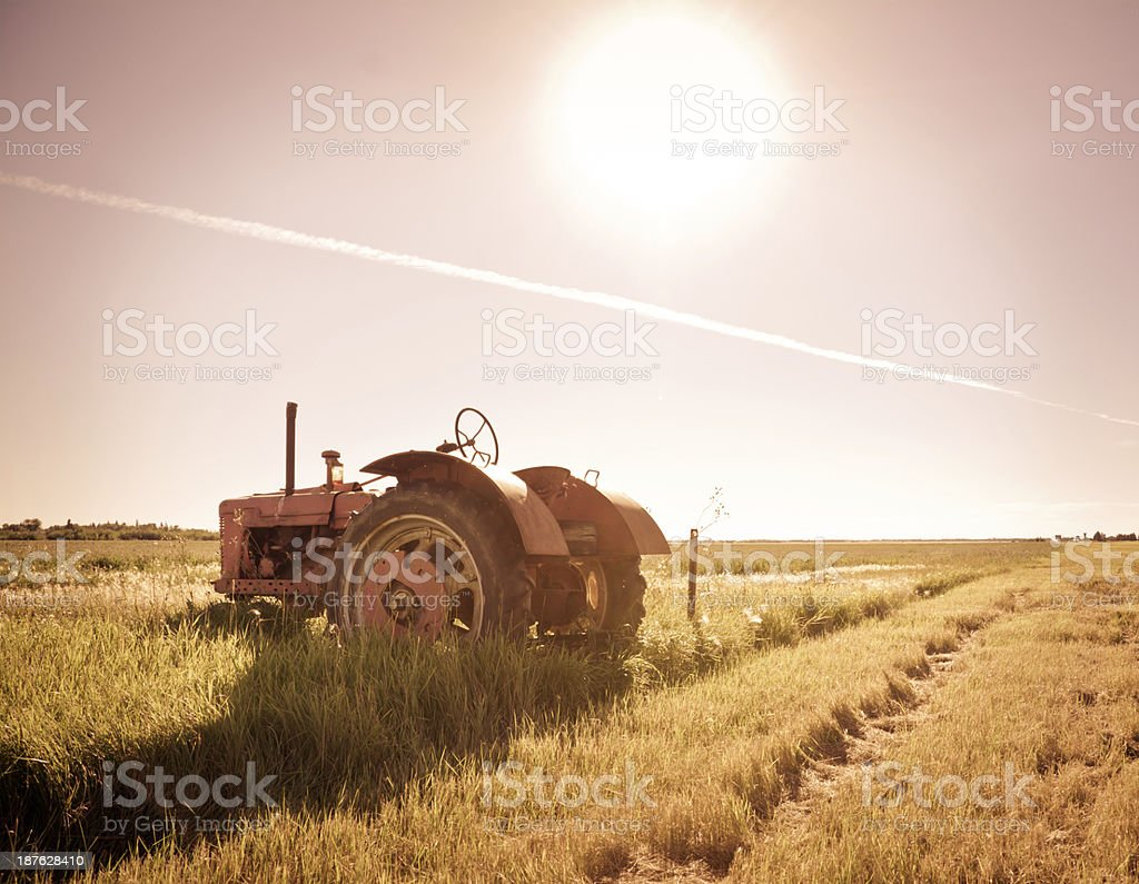 Antique Tractor at Sunset