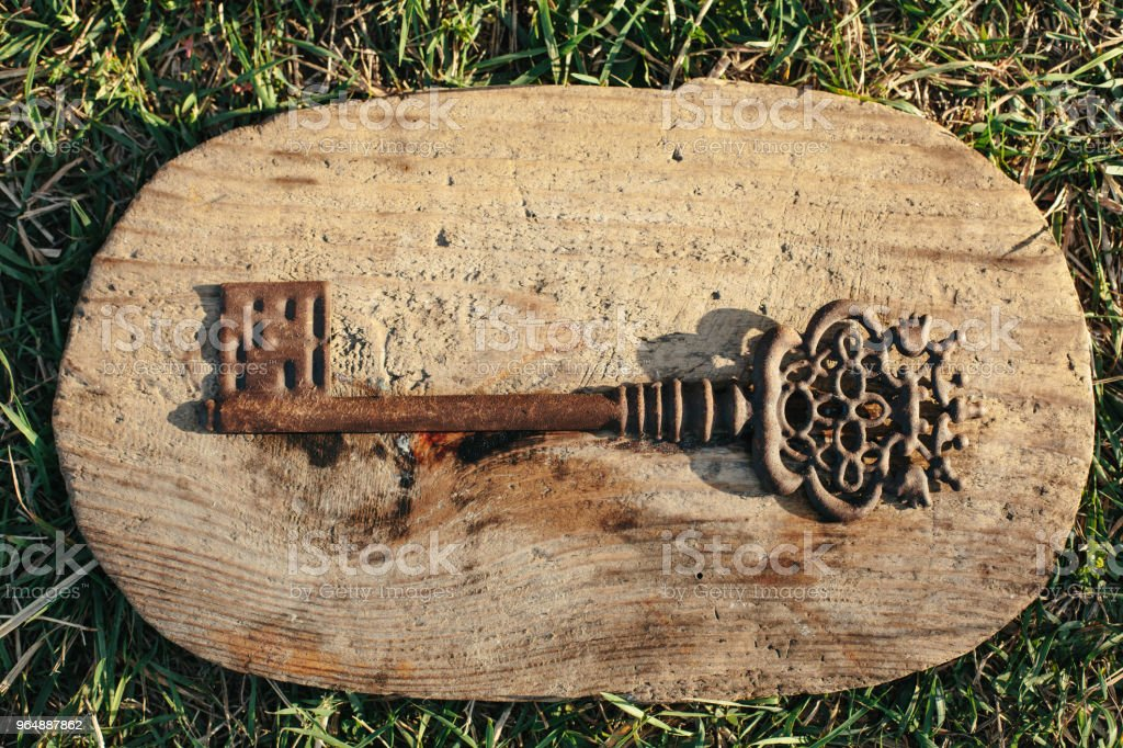 Antique vintage key on wooden stand in the grass royalty-free stock photo