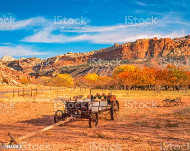 Photo of Antique wagon sits in Apple orchard filled meadow in autumn in Capitol Reef National Park.