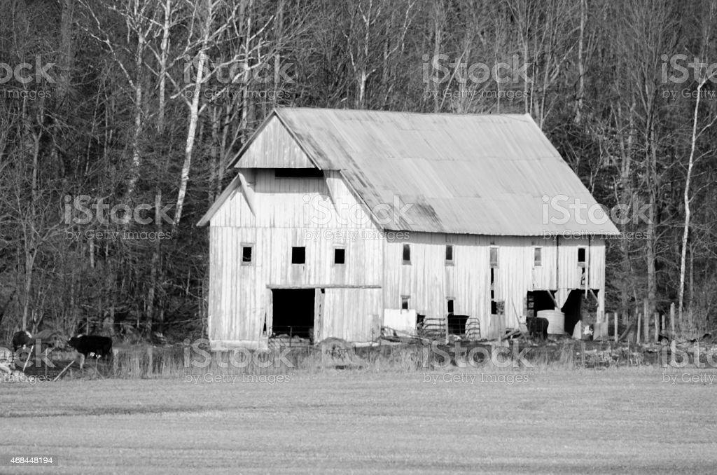 Antique white barn stock photo