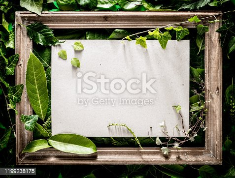 Antique wood picture frame on fresh green leaves background with paper note