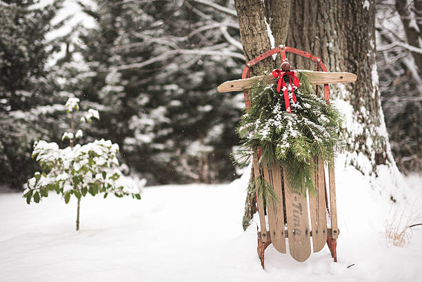 Antique Wooden Sled with Pine Against a Tree in Snow stock photo