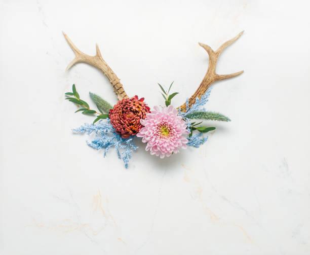 geweih, dekoriert mit blumen auf hellem marmor hintergrund - jagd kranz stock-fotos und bilder