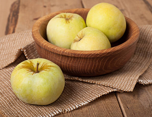 Antonovka apples stock photo