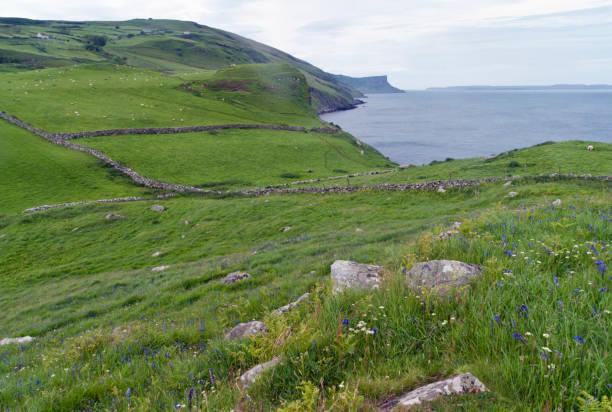 Antrim Coast North from Torr Head stock photo