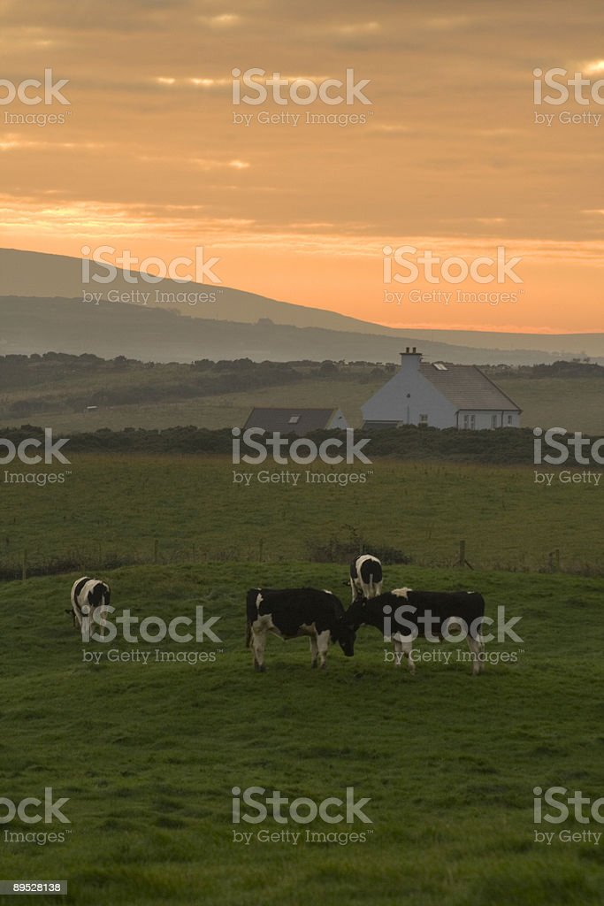 Antrim county royalty-free stock photo