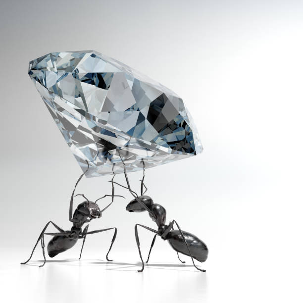 Ants carrying a Diamond foto