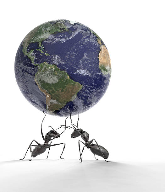 ants lifting the earth - ants working together stock photos and pictures