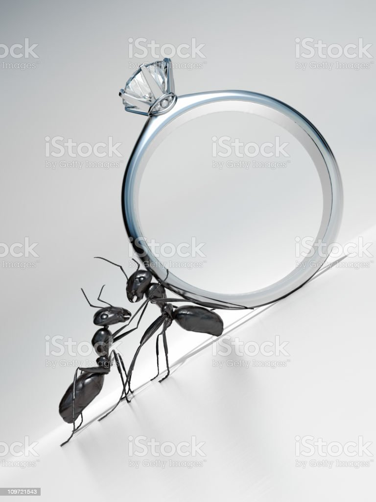 Ants with Diamond Ring royalty-free stock photo
