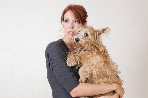 Anxious woman with dog stock photo
