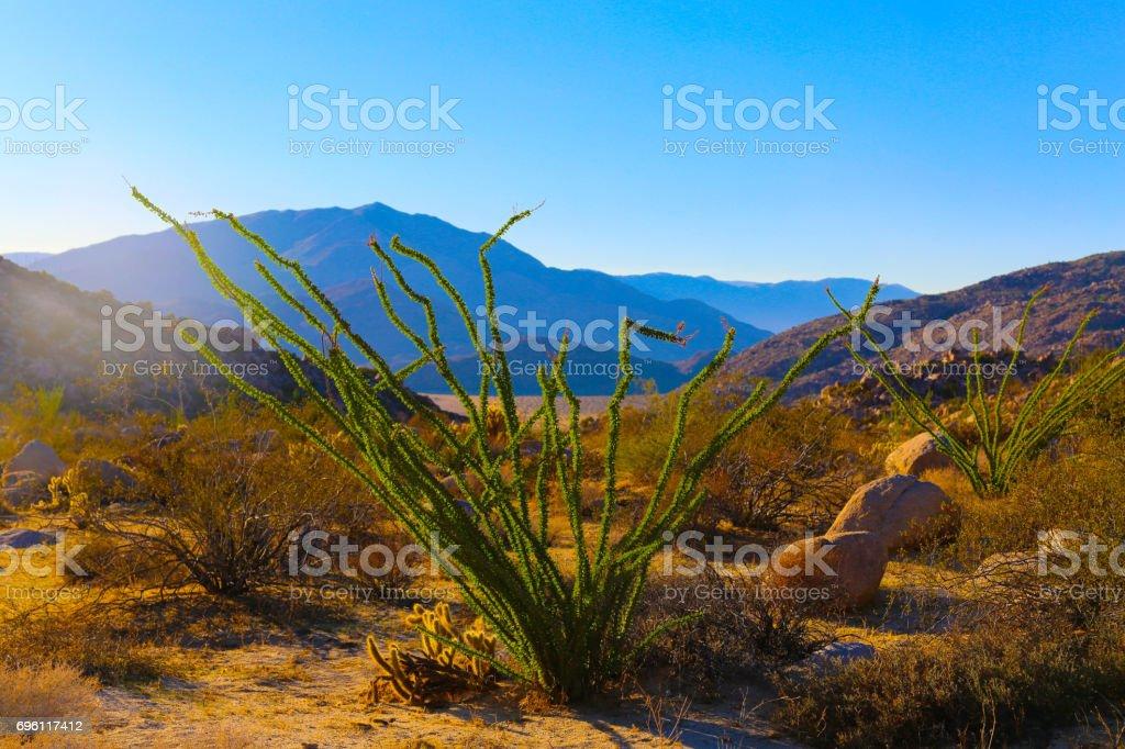 Anza-Borrego Desert State Park stock photo