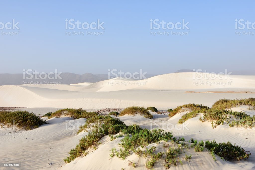 Aomak beach, Socotra island, Yemen stock photo
