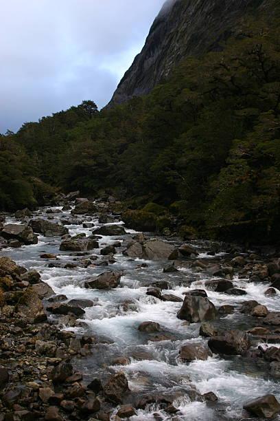Aotearoa Stream stock photo