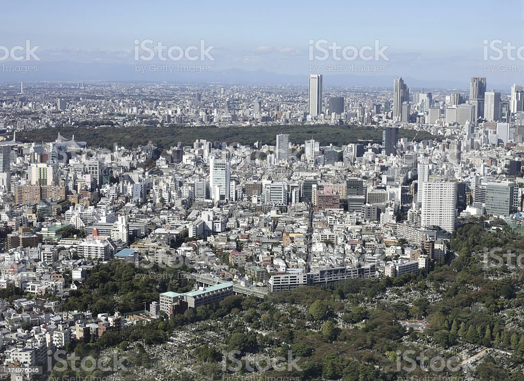 Aoyama Cemetery and Tokyo Skyline, Japan royalty-free stock photo