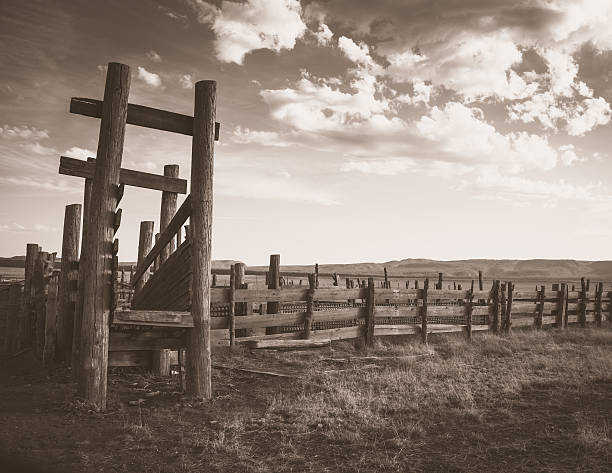 Apache Cattle ranch old west sepia wood pen cloud background An old cattle loading pen in Arizona on the San Carlos Apache Tribal reservation.  Sepia treatment brings out the soft look of the sun faded look.  This shot has a great Old West feel to it. rancher stock pictures, royalty-free photos & images