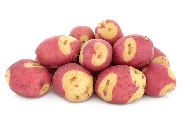 Apache Potatoes stock photo