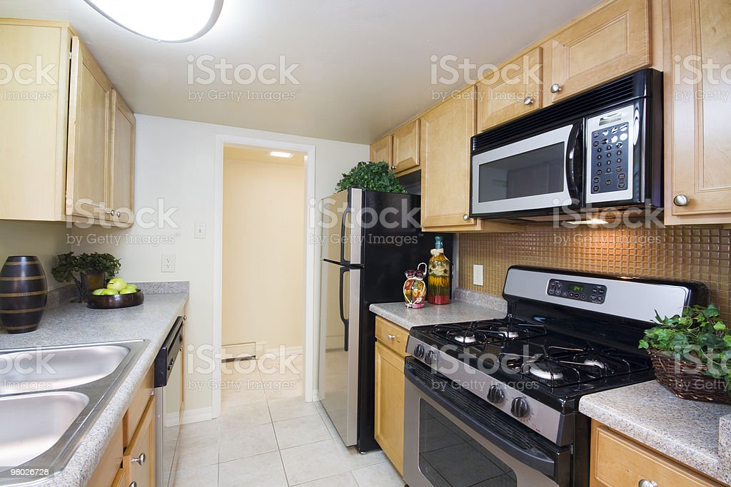 Aparmentment Kitchen royalty-free stock photo