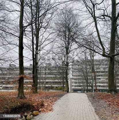 50 year-old Concrete apartment buildings, placed in natural parkland in a Copenhagen suburb.