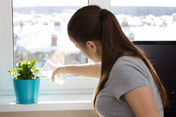 Apartment cleaning.A young European girl with long hair watering flower in a blue pot stock photo