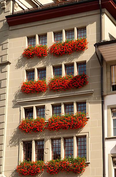 Apartment-Haus mit roten Geraniums – Foto