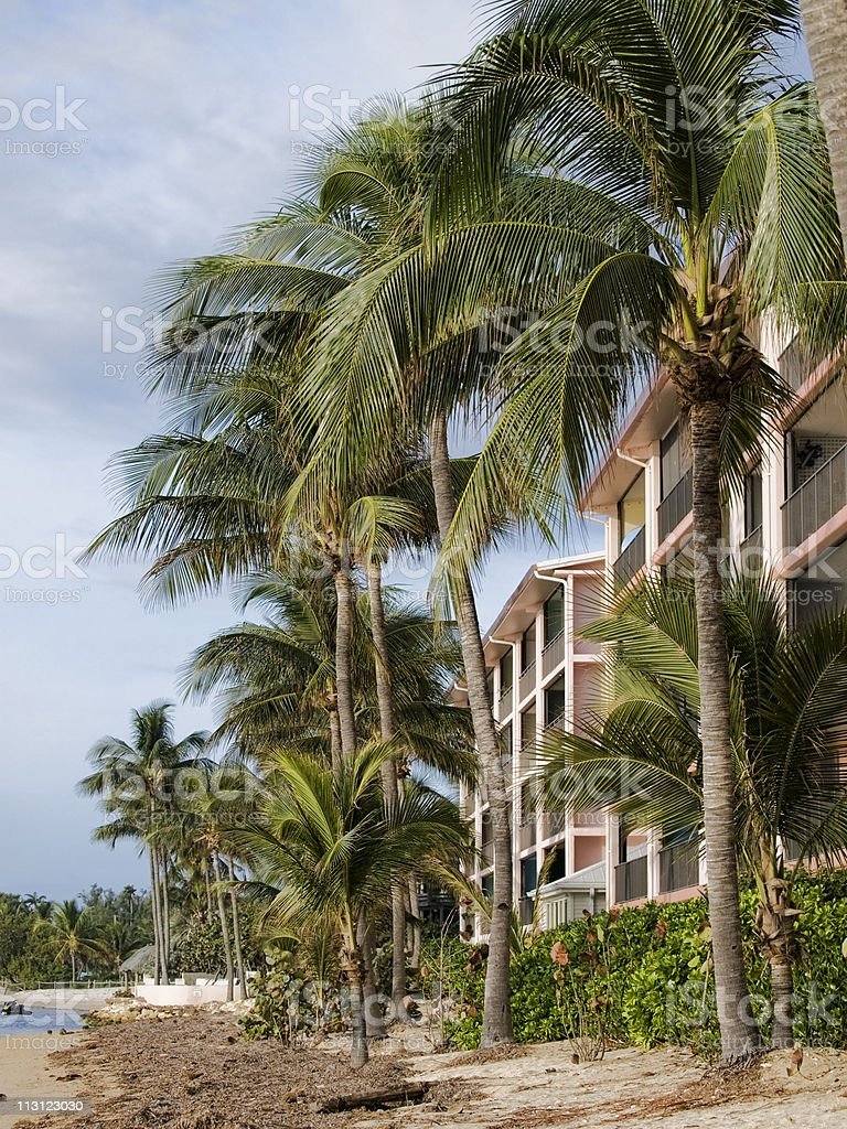 Apartment on Tropical Coastline stock photo
