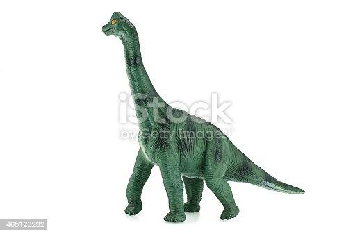 Dinosaurs bone.