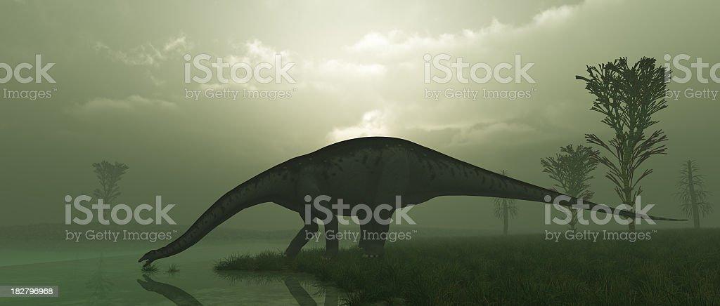 Apatosaurus stock photo