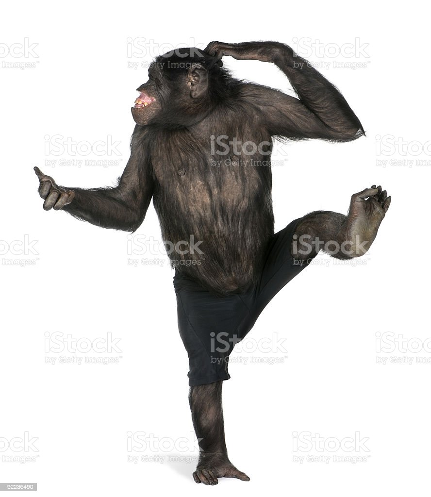 Grand singe danse sur un pied - Photo