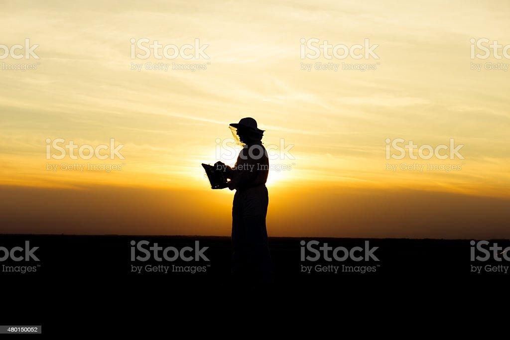 Apiarist at sunset stock photo