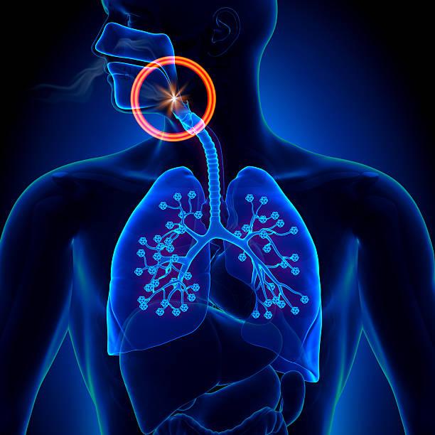 apnea - obstruction sleep apnea - sleeping illustration stockfoto's en -beelden