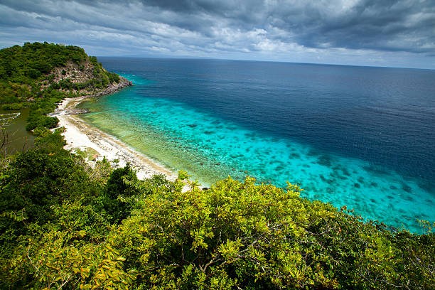 Apo View from top of a hill to Apo Reef Natural Park. Apo island, Philippines apothegm stock pictures, royalty-free photos & images