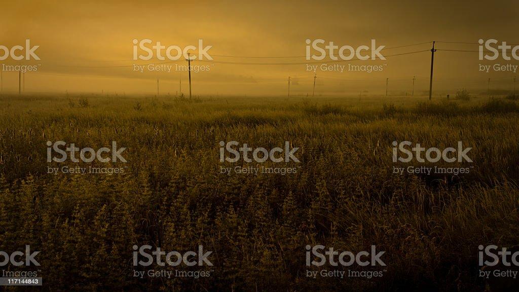 Apocalyptic fields scenery royalty-free stock photo