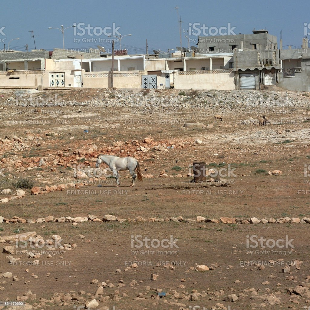 Apollonia, Libya royalty-free stock photo