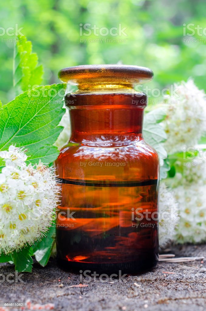 Apothecary bottle and Hawthorn flowers. Herbal medicine.