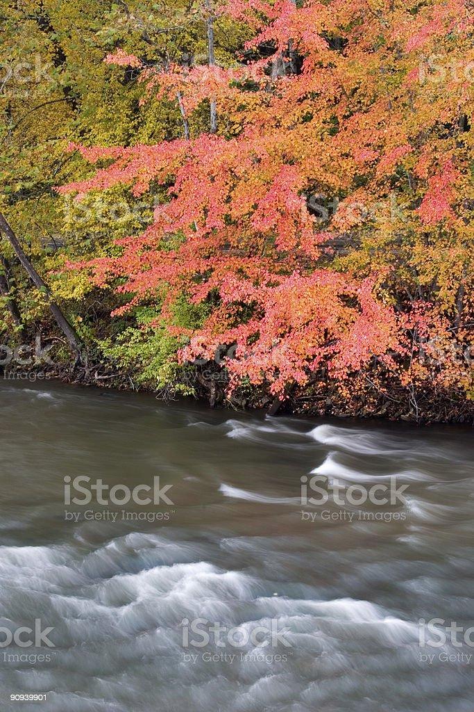 Appalachian Autumn royalty-free stock photo