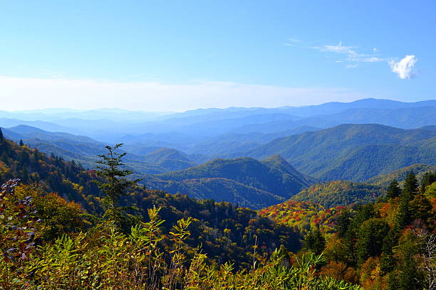Appalachian Mountain Scene-04 stock photo