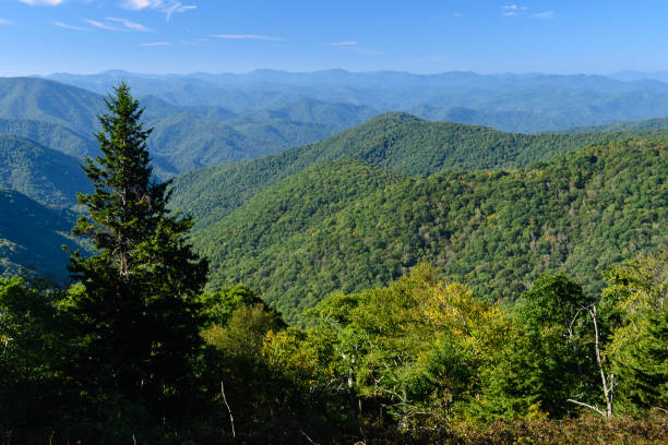 Appalachian Mountain View Along the Blue Ridge Parkway Appalachian Mountain View Along the Blue Ridge Parkway appalachia stock pictures, royalty-free photos & images