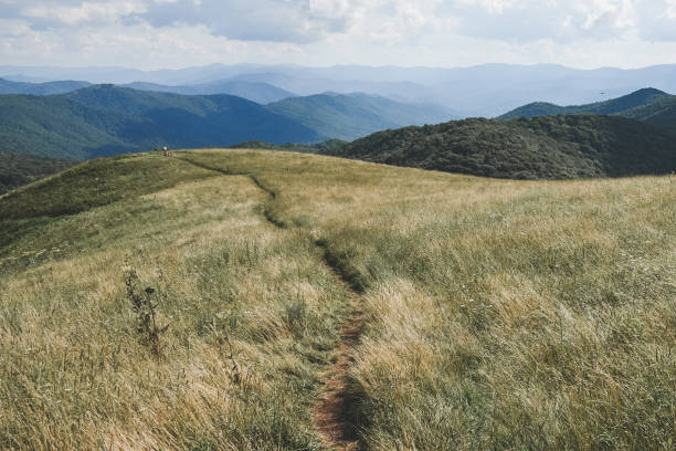 Appalachian Trail on Max Patch Max Patch, North Carolina. The Appalachian Trail runs along the grassy field on top of a mountain. The trail heads toward many ridges of the Blue Ridge Mountains. appalachian trail stock pictures, royalty-free photos & images