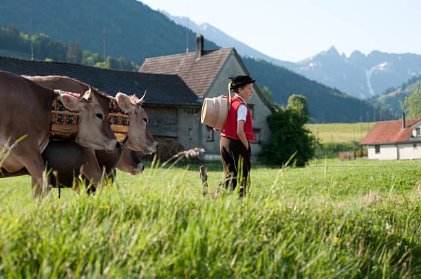 appenzell - patrick hutter stock-fotos und bilder
