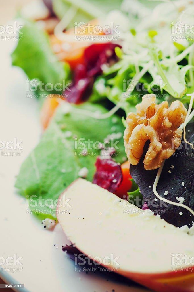 Appetizing Salad stock photo