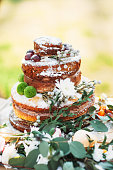 Appetizing wedding cake in rustic style. Simple chocolate pastry decorated with flowers and chestnuts.
