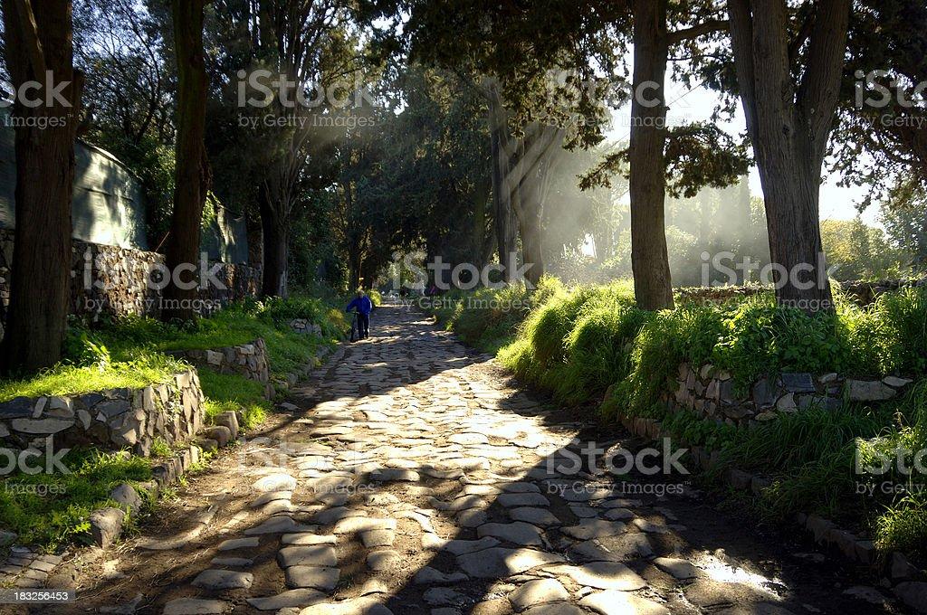 Appian Way Mist stock photo