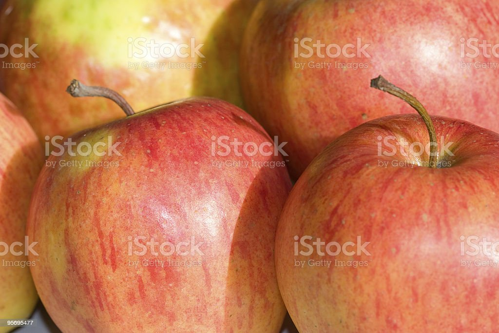apple and apples stock photo