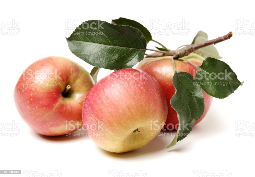 Apple and leaves  isolated on white background - fotografia de stock