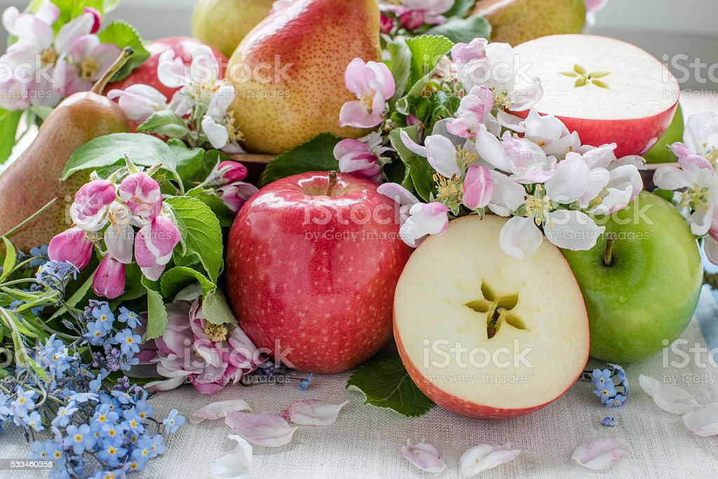 Apple and pears in composition with spring flower, view in focus – zdjęcie