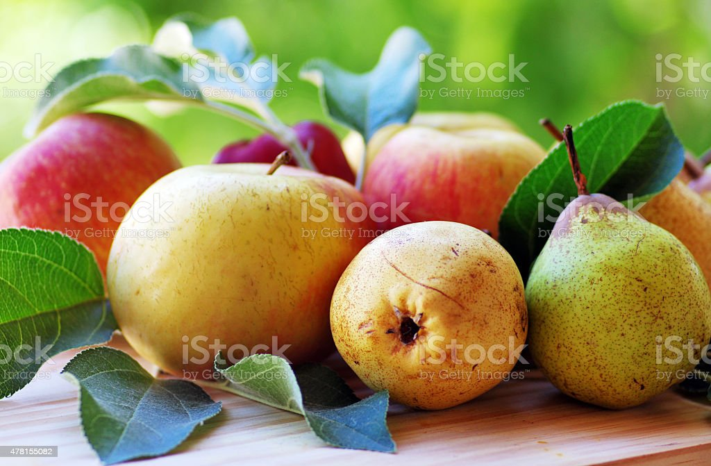 apple and pears on table stock photo