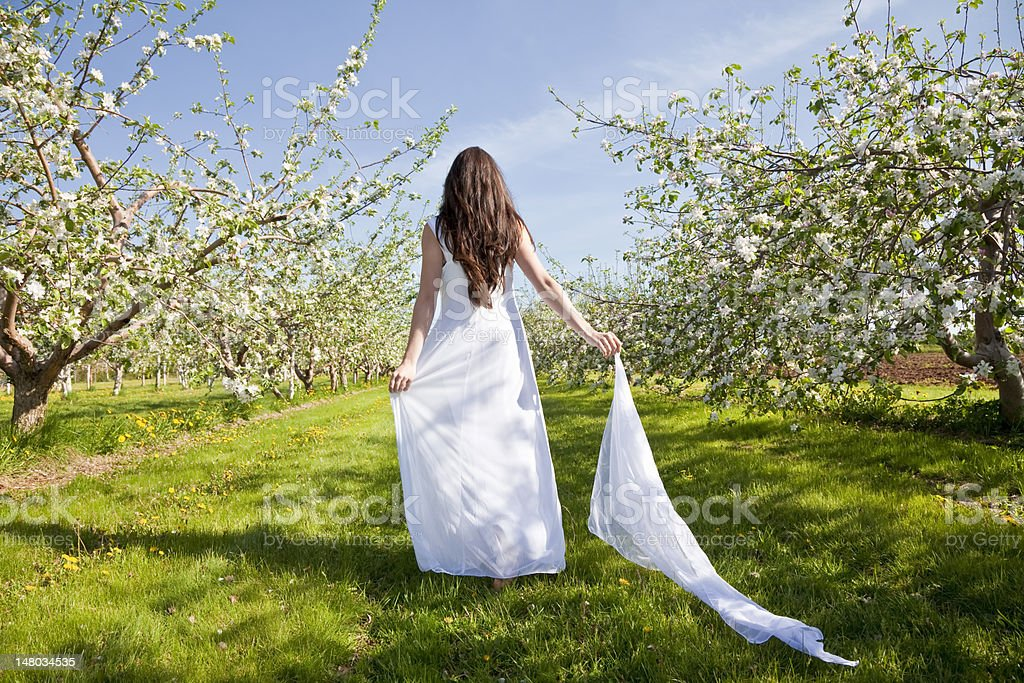 Apple Blossom Woman royalty-free stock photo