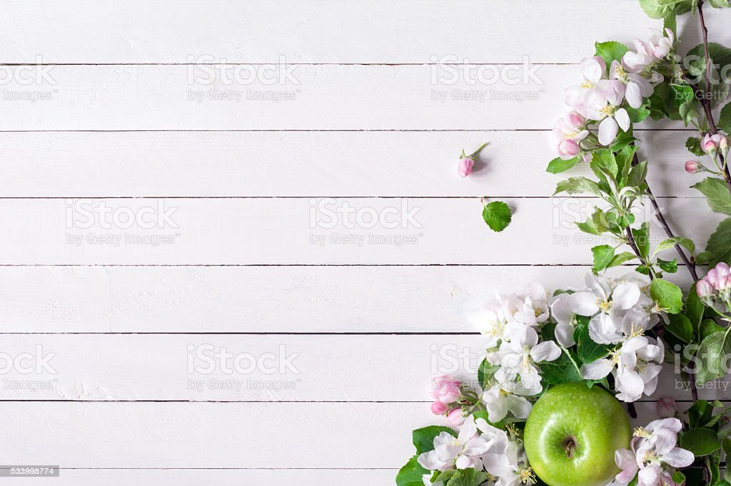 Apple blossoms on white wooden background stock photo