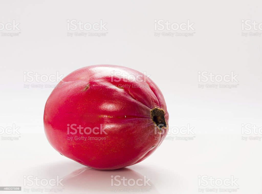 Apple cactus . stock photo