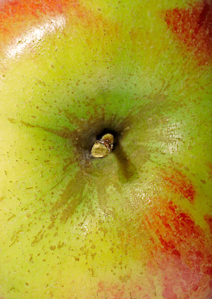Apple-Nahaufnahme – Foto